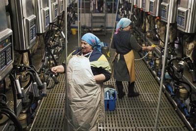 Персонал молочной фермы