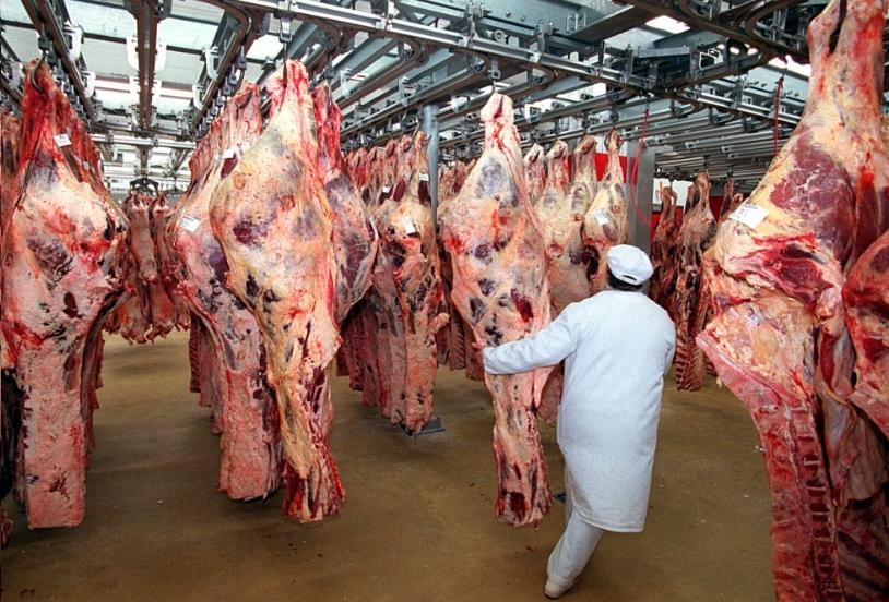 Поставщики мяса
