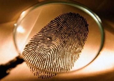 Проведение независимых криминалистических экспертиз
