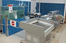 Оборудование для рыбного магазина