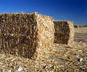 Отходы лесозаготовительной промышленности спрессованные в брикеты