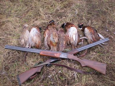 Подстреленных птиц можно продавать поштучно