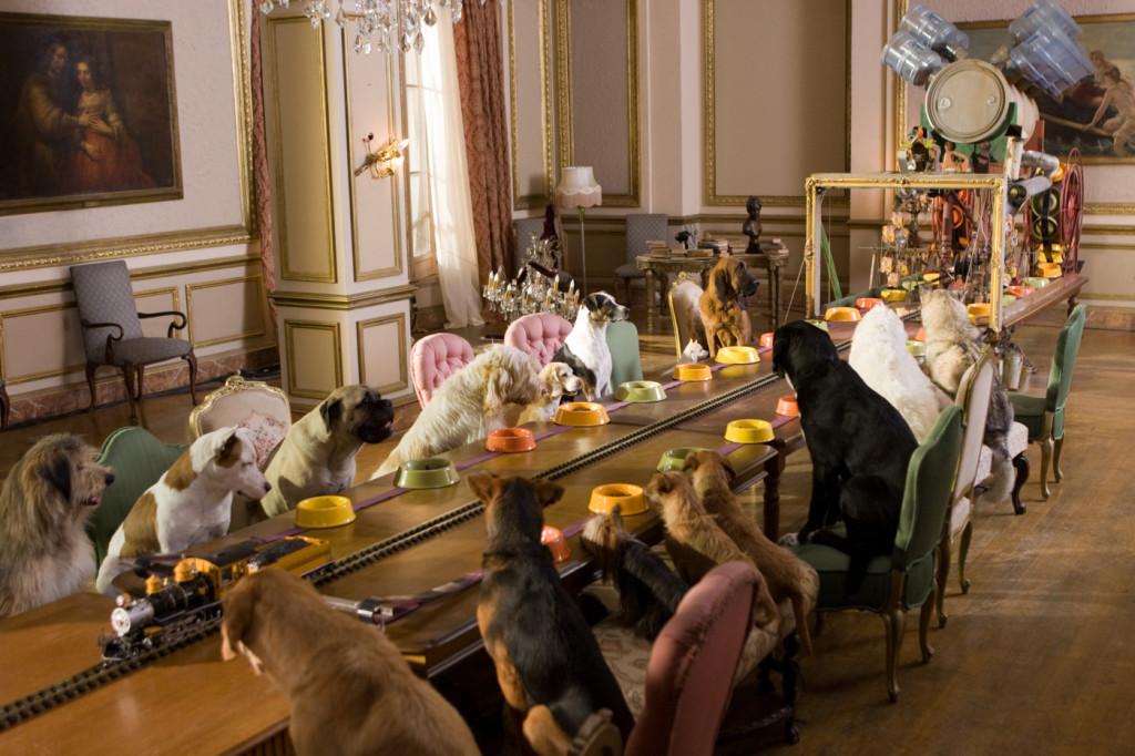 Гостиница для животных.