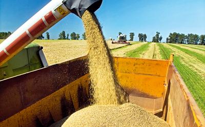 Оборудование для сбора зерна