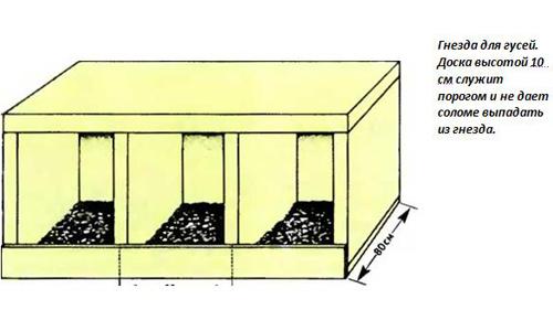 Схема гнезда для гусей