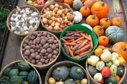 Экологически чистое сельское хозяйство