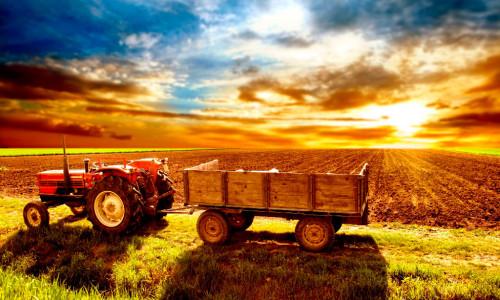 Возможности сельского хозяйства в России