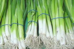 Зеленый лук, готовый к продаже