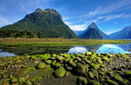 Река в Новой Зеландии