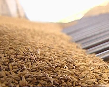 В Ростовской области намолотили первый миллион тонн зерна урожая 2014 года