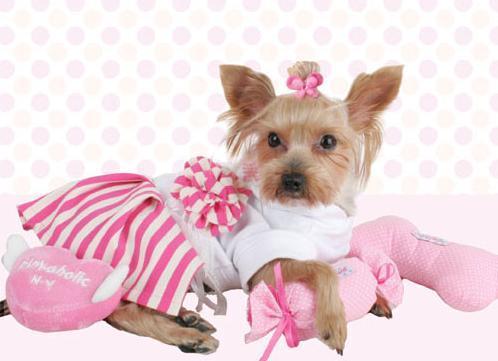 Создание одежды для собак