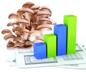 Расчеты расходов и доходов по выращиванию грибов
