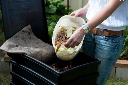 Вермикомпостирование - использование жизнедеятельности дождевых червей с целью качественной переработки органики