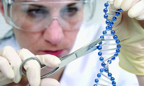 Безопасная генная инженерия как передовая технология сельского хозяйства