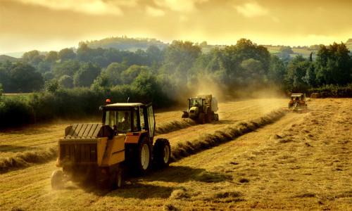 Открытие фермерского дела