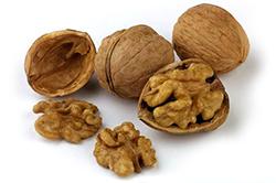 Изображение - Грецкие орехи как бизнес greckie-orehi
