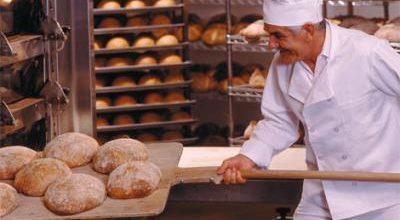 Бизнес план пекарня заключение курсы бизнес план омск